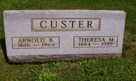 CUSTER, THERESA M. - Stark County, Ohio | THERESA M. CUSTER - Ohio Gravestone Photos