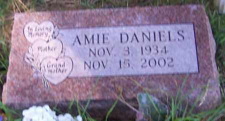 DANIELS, AMIE - Stark County, Ohio | AMIE DANIELS - Ohio Gravestone Photos
