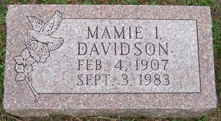 DAVIDSON, MAMIE I. - Stark County, Ohio | MAMIE I. DAVIDSON - Ohio Gravestone Photos