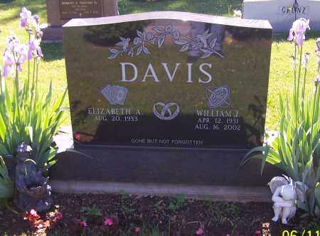 DAVIS, WILLIAM J. - Stark County, Ohio | WILLIAM J. DAVIS - Ohio Gravestone Photos