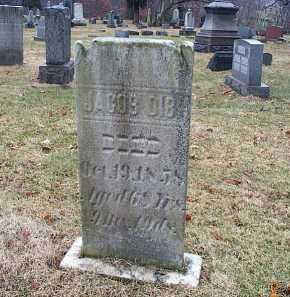 DIBI, JACOB - Stark County, Ohio | JACOB DIBI - Ohio Gravestone Photos