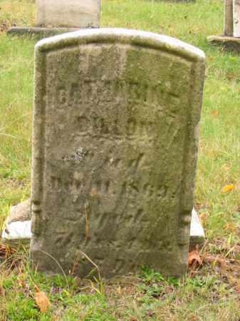 JONES DILLON, CATHARINE - Stark County, Ohio | CATHARINE JONES DILLON - Ohio Gravestone Photos