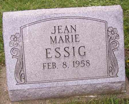 ESSIG, JEAN MARIE - Stark County, Ohio | JEAN MARIE ESSIG - Ohio Gravestone Photos