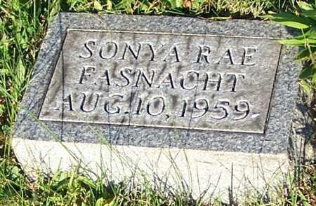 FASNACHT, SONYA RAE - Stark County, Ohio | SONYA RAE FASNACHT - Ohio Gravestone Photos