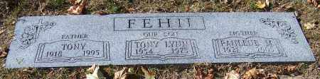 FEHII, TONY LYNN - Stark County, Ohio | TONY LYNN FEHII - Ohio Gravestone Photos
