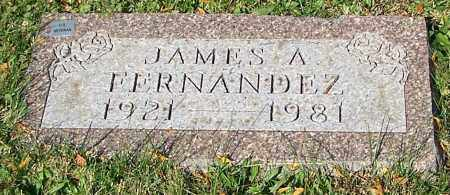 FERNANDEZ, JAMES A. - Stark County, Ohio | JAMES A. FERNANDEZ - Ohio Gravestone Photos
