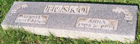 FUSKO, VENDEL - Stark County, Ohio | VENDEL FUSKO - Ohio Gravestone Photos