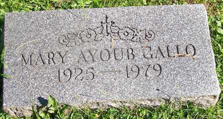 GALLO, MARY AYOUB - Stark County, Ohio | MARY AYOUB GALLO - Ohio Gravestone Photos