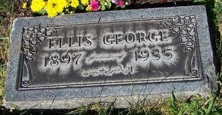 GEORGE, ELLIS - Stark County, Ohio | ELLIS GEORGE - Ohio Gravestone Photos