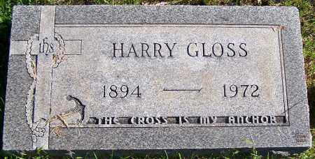 GLOSS, HARRY - Stark County, Ohio | HARRY GLOSS - Ohio Gravestone Photos