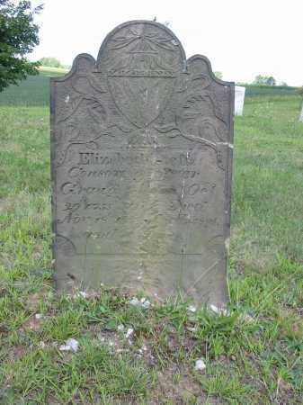 STEFFA GRAUG, ELIZABETH - Stark County, Ohio | ELIZABETH STEFFA GRAUG - Ohio Gravestone Photos