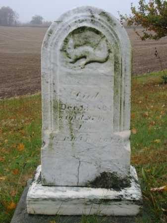 HAAG, SAMUEL - Stark County, Ohio   SAMUEL HAAG - Ohio Gravestone Photos