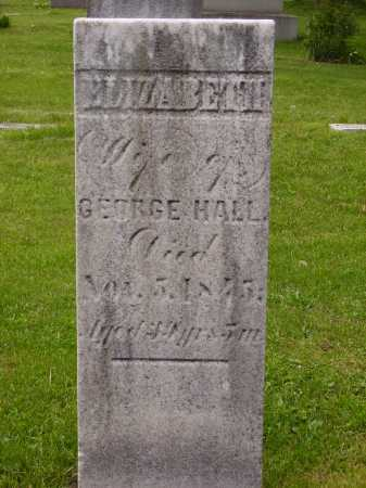 HALL, ELIZABETH - Stark County, Ohio | ELIZABETH HALL - Ohio Gravestone Photos