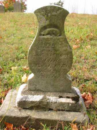 HARMONY, SUSAN - Stark County, Ohio | SUSAN HARMONY - Ohio Gravestone Photos