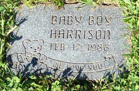 HARRISON, BABY BOY - Stark County, Ohio | BABY BOY HARRISON - Ohio Gravestone Photos