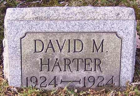 HARTER, DAVID M. - Stark County, Ohio | DAVID M. HARTER - Ohio Gravestone Photos