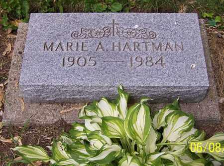 HARTMAN, MARIE A. - Stark County, Ohio | MARIE A. HARTMAN - Ohio Gravestone Photos