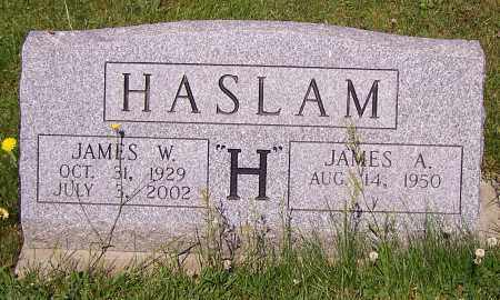 HASLAM, JAMES W. - Stark County, Ohio | JAMES W. HASLAM - Ohio Gravestone Photos