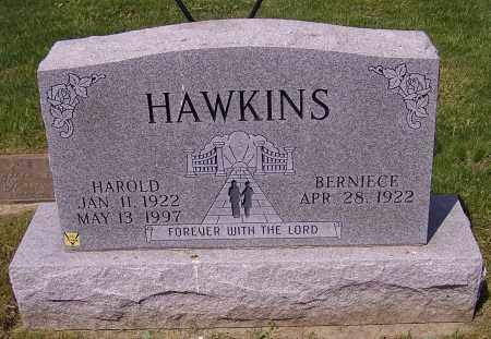 HAWKINS, BERNIECE - Stark County, Ohio | BERNIECE HAWKINS - Ohio Gravestone Photos