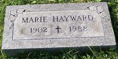 HAYWARD, MARIE - Stark County, Ohio | MARIE HAYWARD - Ohio Gravestone Photos