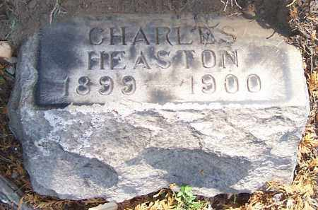 HEASTON, CHARLES - Stark County, Ohio | CHARLES HEASTON - Ohio Gravestone Photos