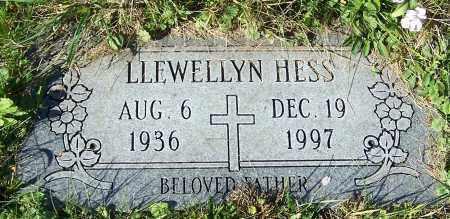 HESS, LLEWELLYN - Stark County, Ohio | LLEWELLYN HESS - Ohio Gravestone Photos