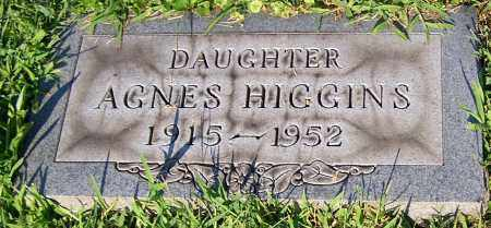 HIGGINS, AGNES - Stark County, Ohio | AGNES HIGGINS - Ohio Gravestone Photos