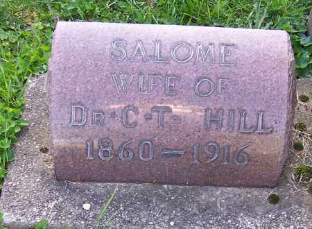 HILL, SALOME - Stark County, Ohio | SALOME HILL - Ohio Gravestone Photos