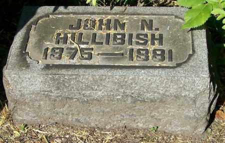 HILLIBISH, JOHN N. - Stark County, Ohio | JOHN N. HILLIBISH - Ohio Gravestone Photos