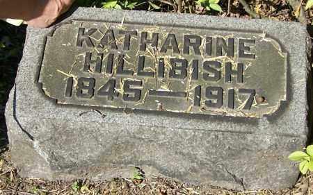 HILLIBISH, KATHARINE - Stark County, Ohio | KATHARINE HILLIBISH - Ohio Gravestone Photos
