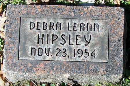 HIPSLEY, DEBRA LEANN - Stark County, Ohio | DEBRA LEANN HIPSLEY - Ohio Gravestone Photos