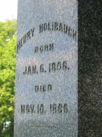 HOLIBAUGH, HENRY - Stark County, Ohio | HENRY HOLIBAUGH - Ohio Gravestone Photos