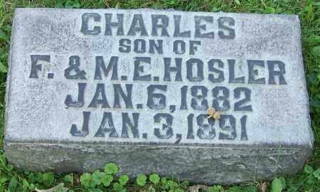 HOSLER, CHARLES - Stark County, Ohio | CHARLES HOSLER - Ohio Gravestone Photos