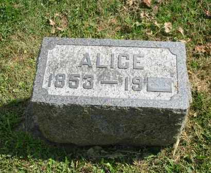 HOWENSTINE, ALICE - Stark County, Ohio | ALICE HOWENSTINE - Ohio Gravestone Photos