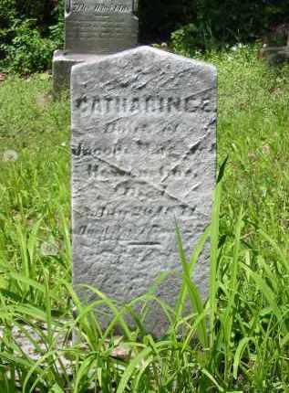 HOWENSTINE, CATHARINE E - Stark County, Ohio | CATHARINE E HOWENSTINE - Ohio Gravestone Photos