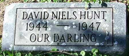 HUNT, DAVID NIELS - Stark County, Ohio | DAVID NIELS HUNT - Ohio Gravestone Photos