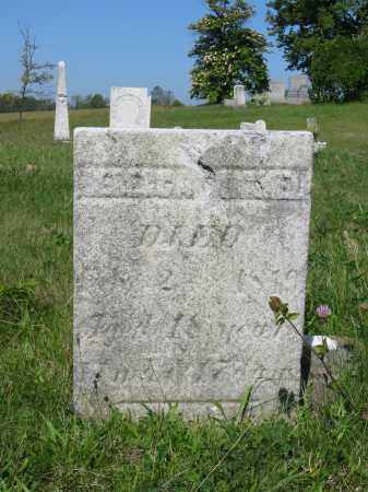 IMMEL, REBECCA - Stark County, Ohio | REBECCA IMMEL - Ohio Gravestone Photos