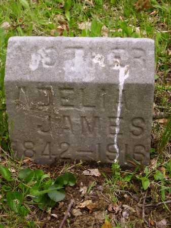 LEVAKEY JAMES, ADELIA I. - Stark County, Ohio | ADELIA I. LEVAKEY JAMES - Ohio Gravestone Photos
