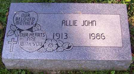 JOHN, ALLIE - Stark County, Ohio | ALLIE JOHN - Ohio Gravestone Photos