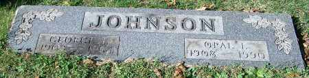 JOHNSON, GEORGE E. - Stark County, Ohio | GEORGE E. JOHNSON - Ohio Gravestone Photos