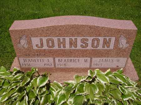 JOHNSON, JAMES W. - Stark County, Ohio | JAMES W. JOHNSON - Ohio Gravestone Photos