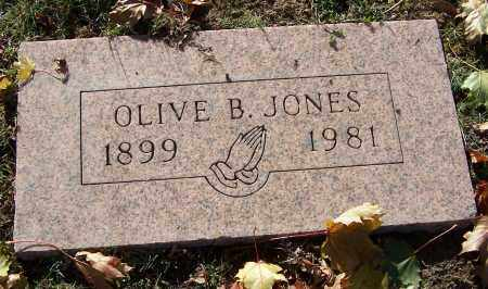 JONES, OLIVE B. - Stark County, Ohio | OLIVE B. JONES - Ohio Gravestone Photos