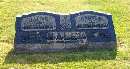 KALEY, ANDREW - Stark County, Ohio | ANDREW KALEY - Ohio Gravestone Photos
