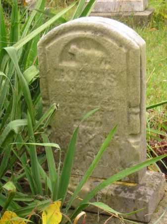 KEYSER, MORRIS - Stark County, Ohio | MORRIS KEYSER - Ohio Gravestone Photos