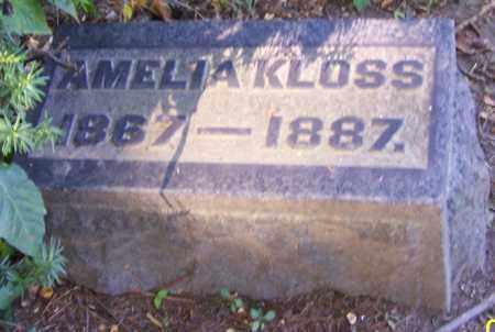 KLOSS, AMELIA - Stark County, Ohio | AMELIA KLOSS - Ohio Gravestone Photos