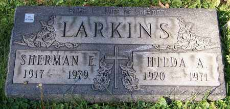 LARKINS, SHERMAN E. - Stark County, Ohio | SHERMAN E. LARKINS - Ohio Gravestone Photos