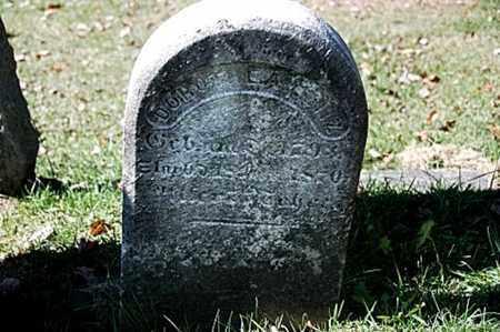 LENZ, DOROTHEA - Stark County, Ohio | DOROTHEA LENZ - Ohio Gravestone Photos