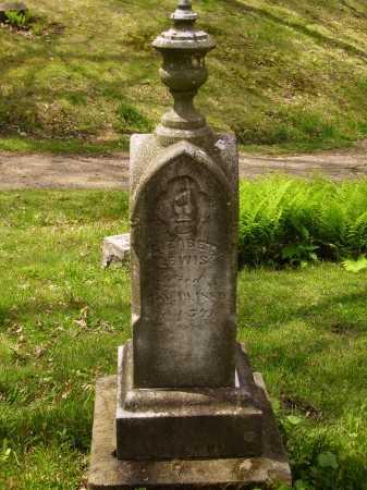 LEWIS, ELIZABETH - Stark County, Ohio | ELIZABETH LEWIS - Ohio Gravestone Photos