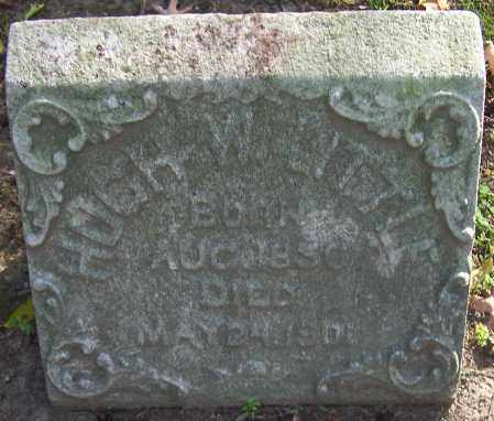 LITTLE, HUGH W. - Stark County, Ohio | HUGH W. LITTLE - Ohio Gravestone Photos