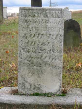 LOWER, MARY ANN - Stark County, Ohio | MARY ANN LOWER - Ohio Gravestone Photos